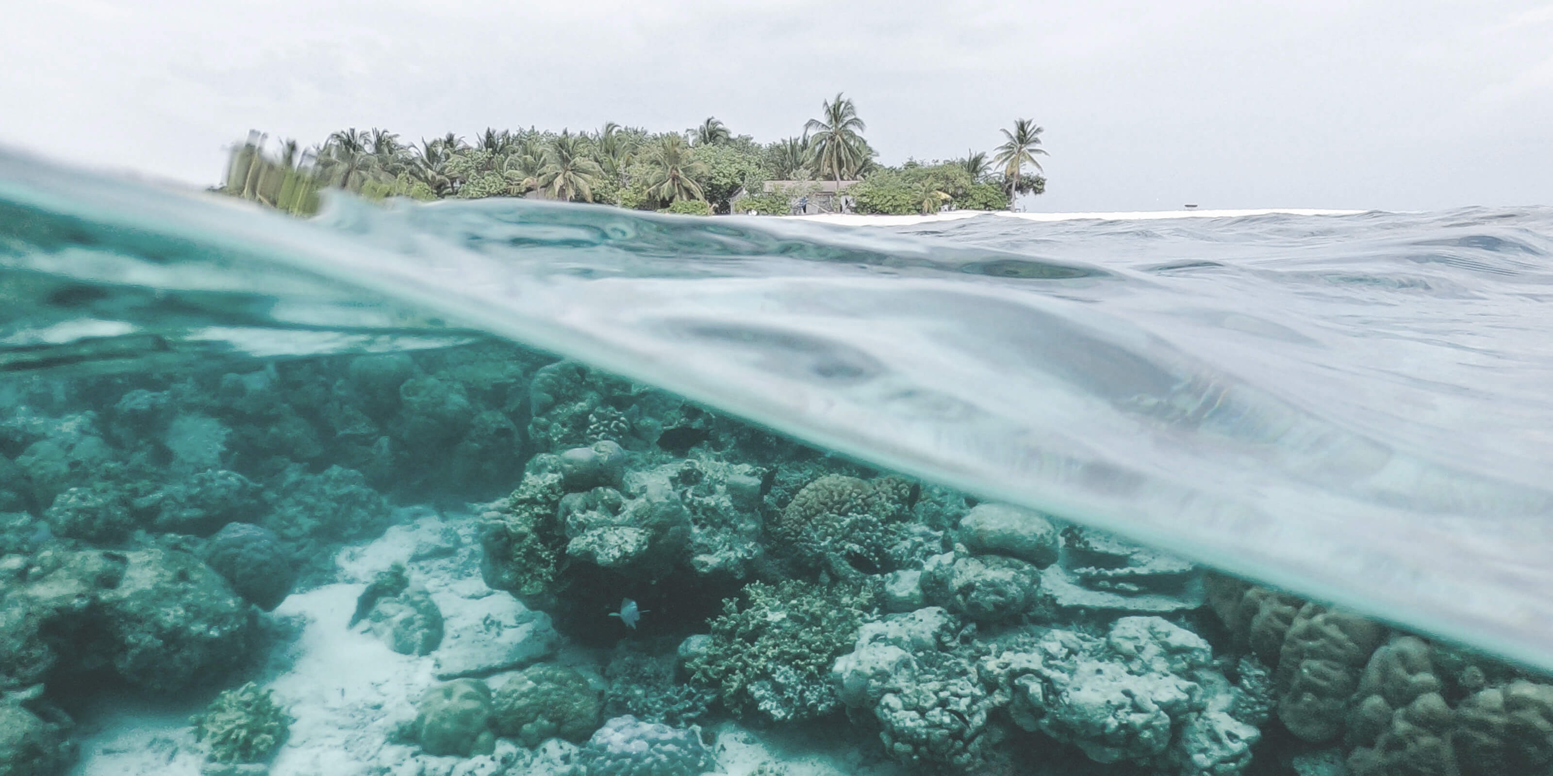 coral reef, island in distance