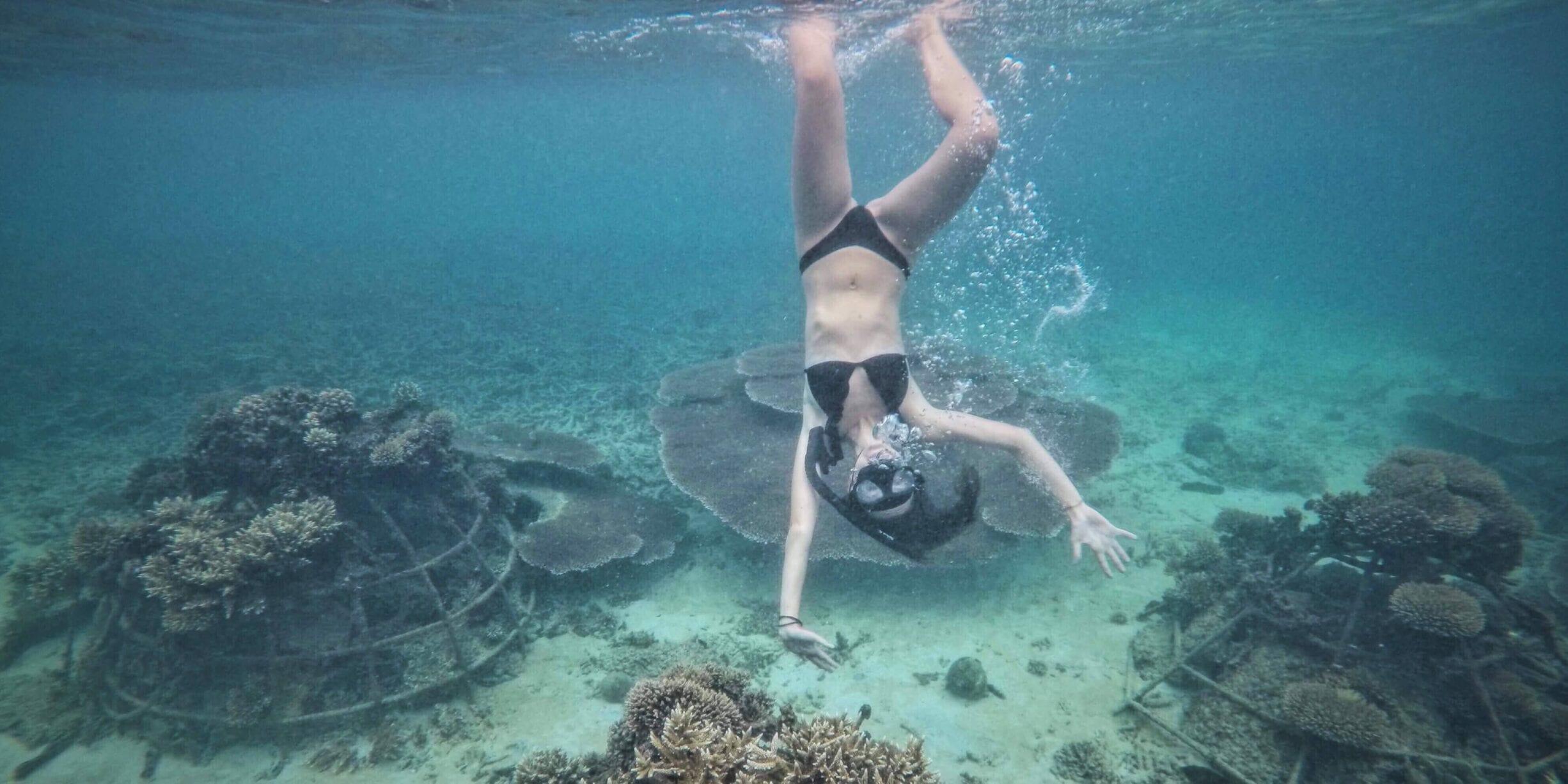 michelle vogel swimming underwater near coral reef