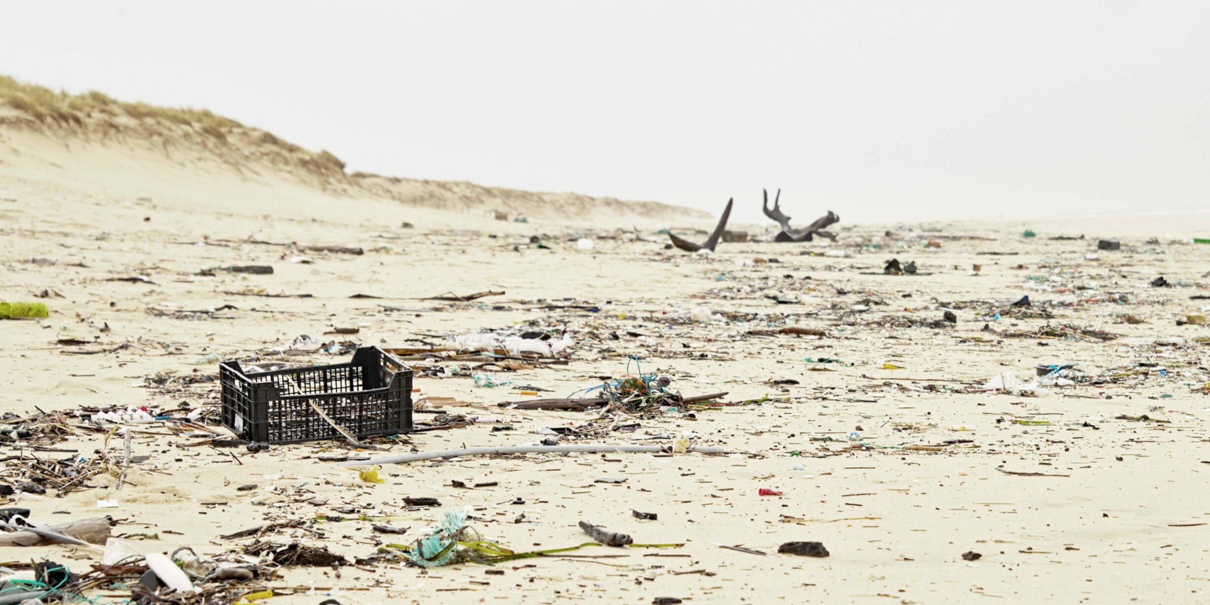 beach littered with trash