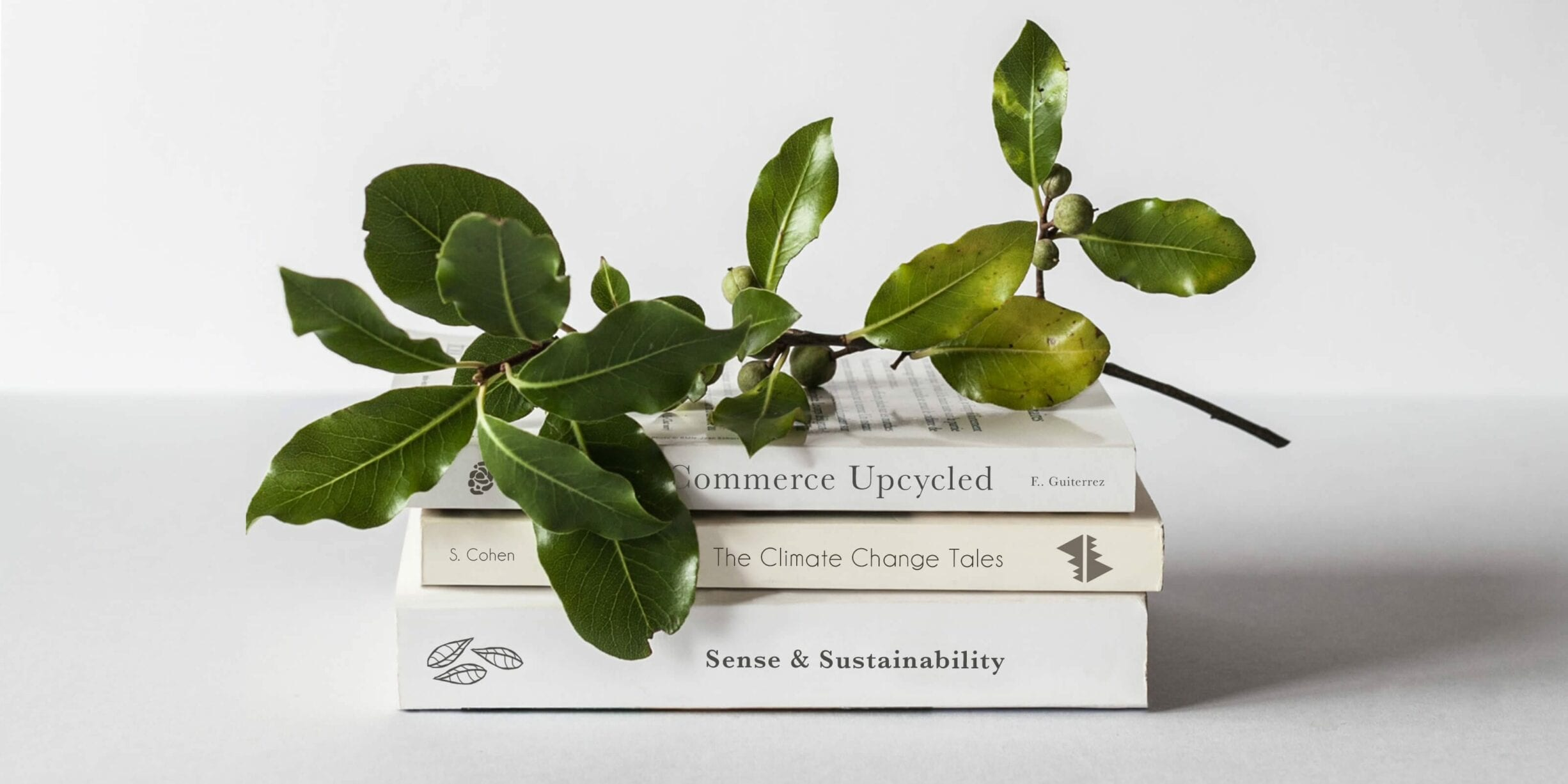 stack of books with plant on top