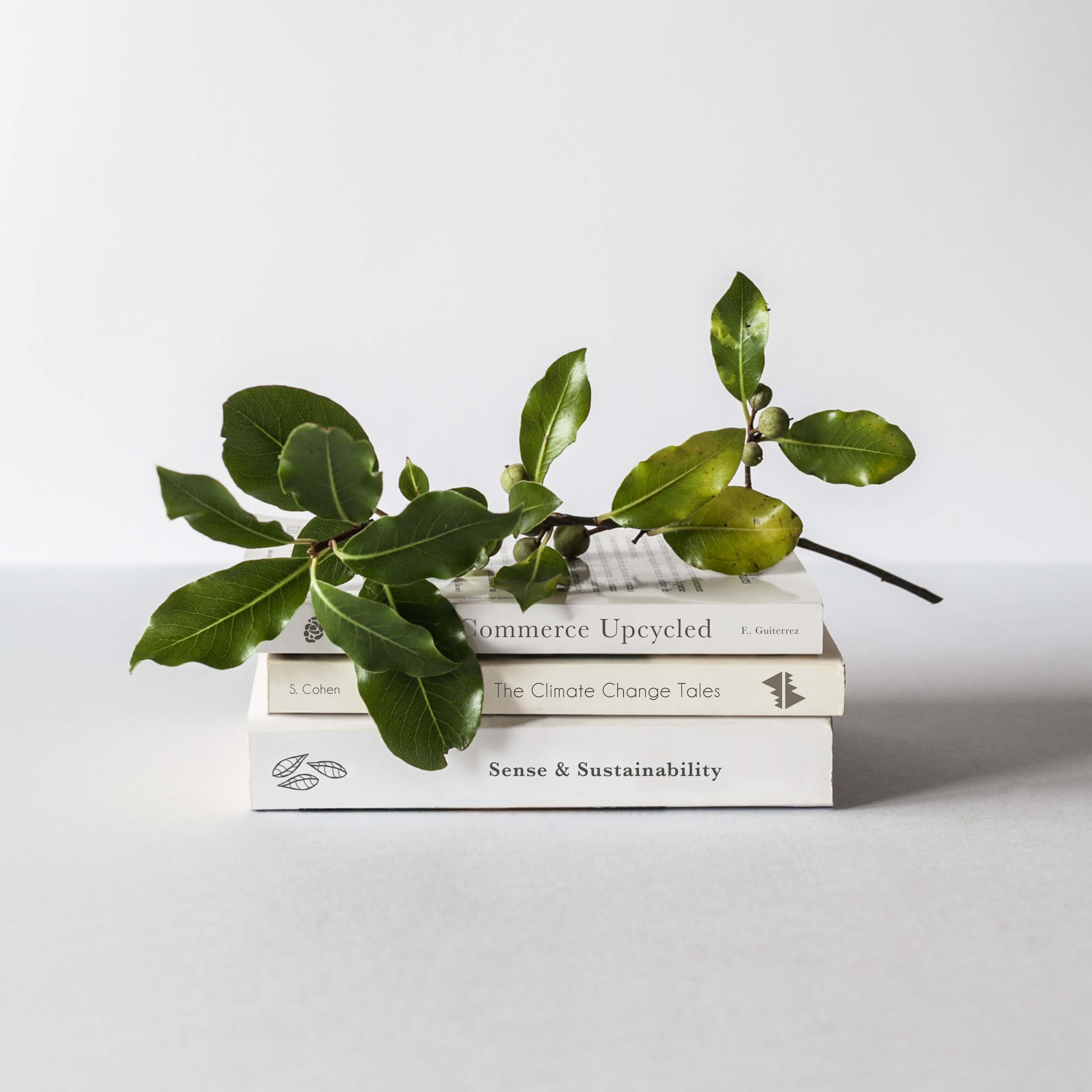 stack of books with plant on top thumbnail image