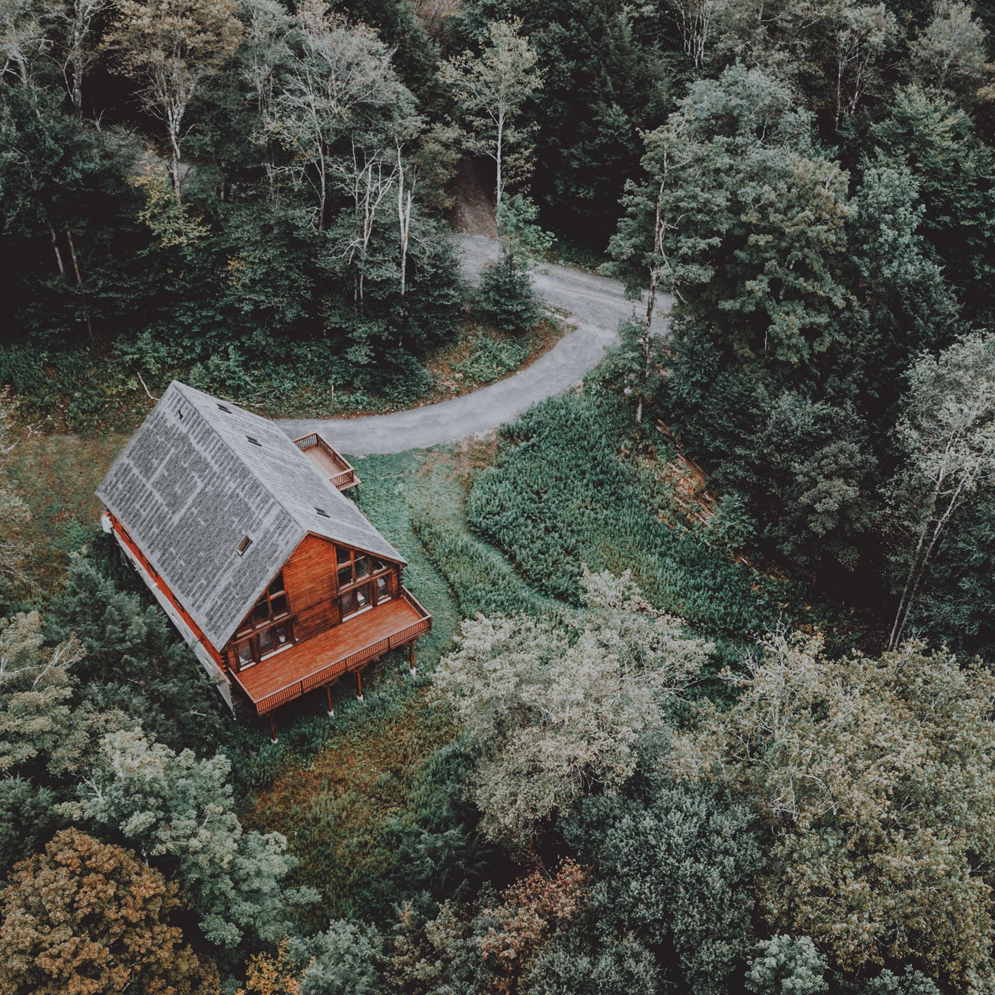 wooden cabin, forest, driveway