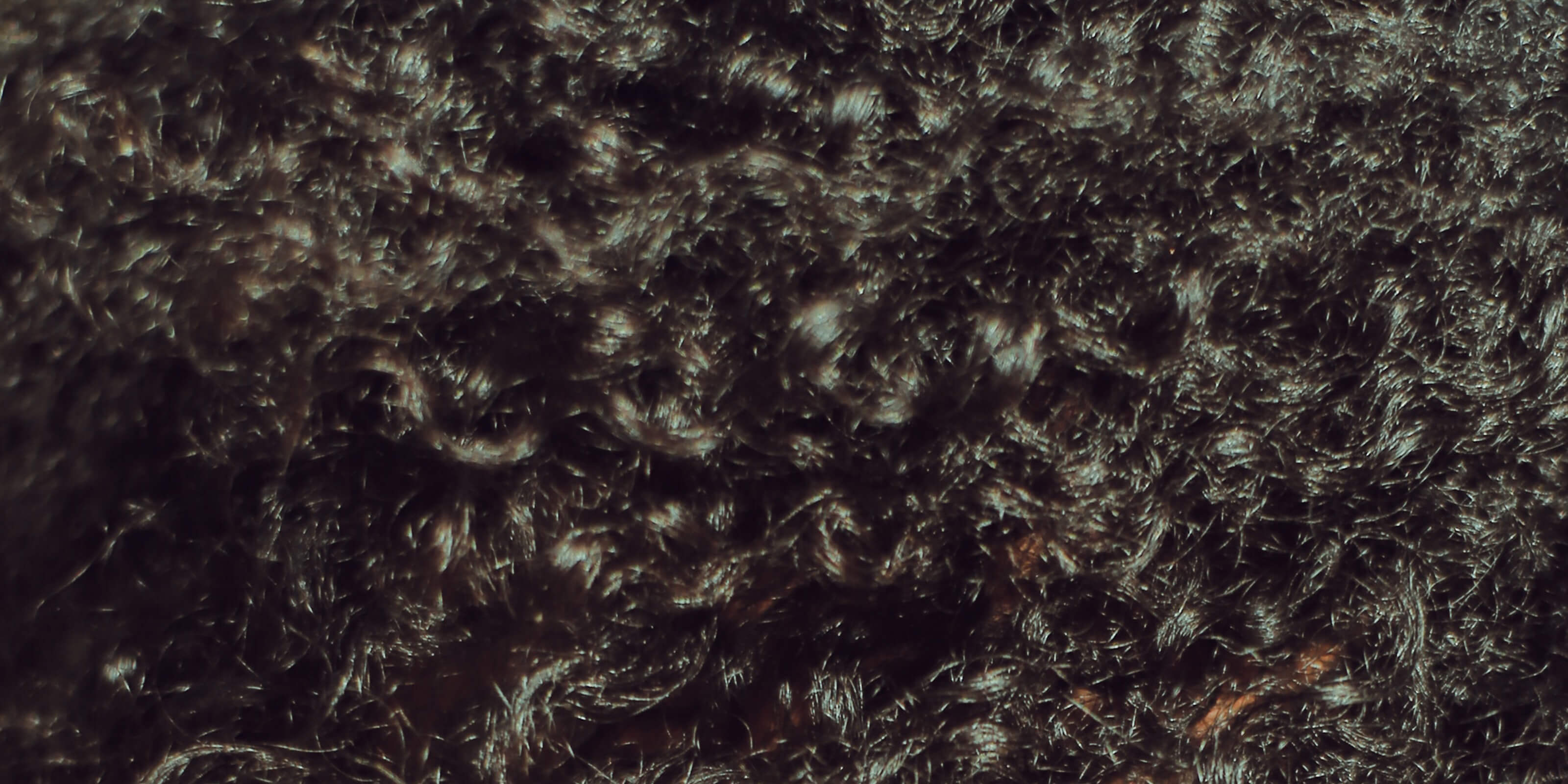 close up image of curly hair