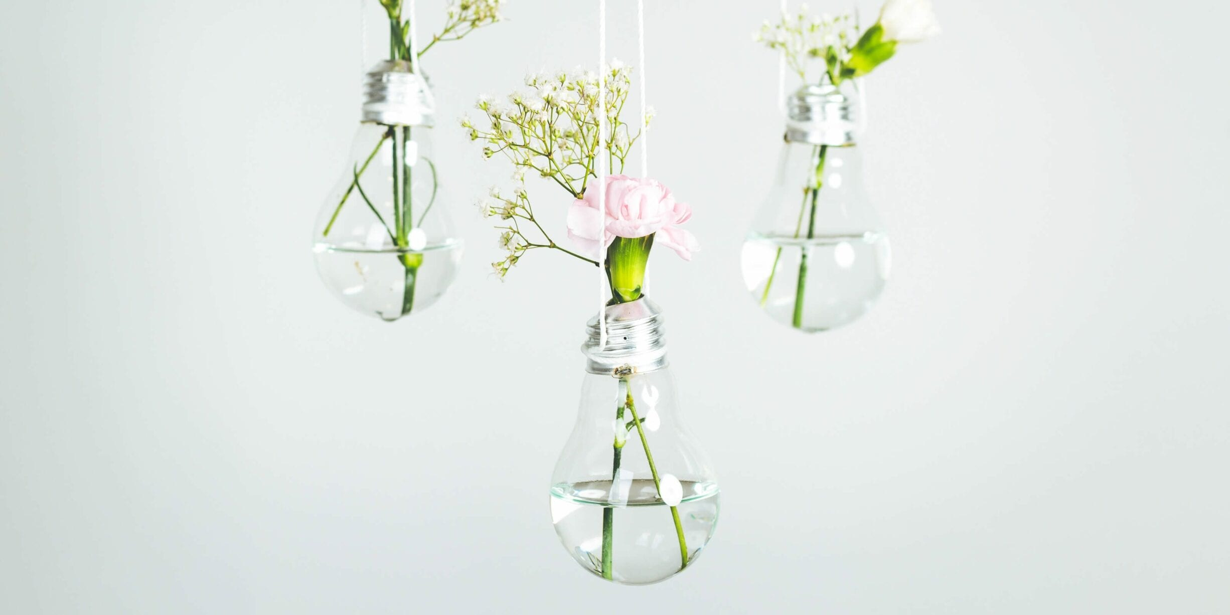 hanging light bulbs, vases, flowers