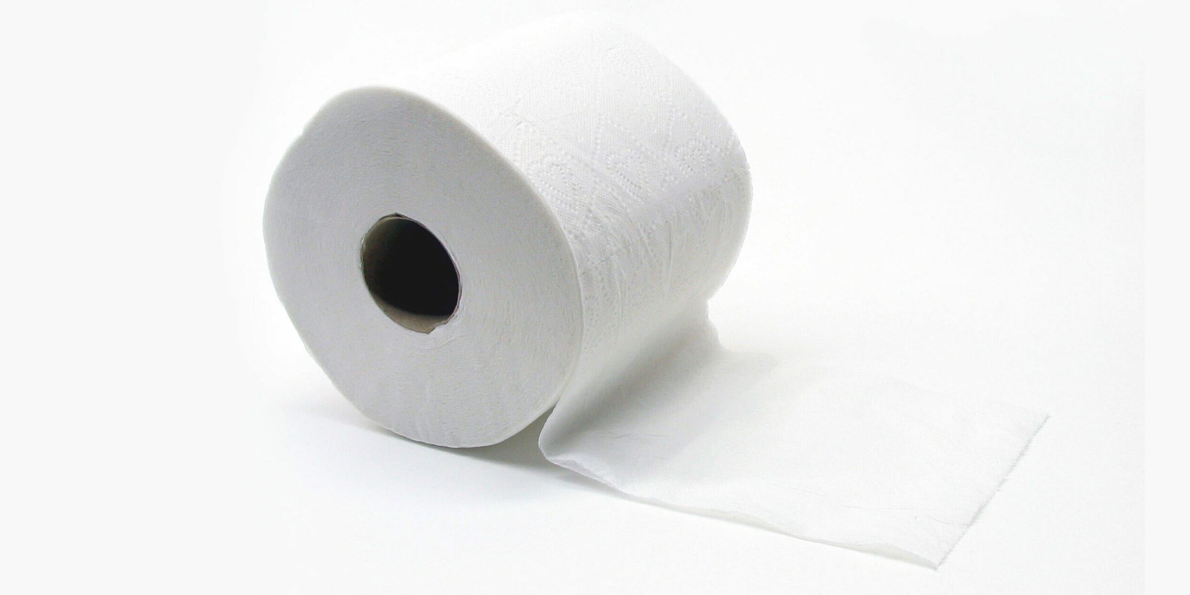 one roll of toilet paper