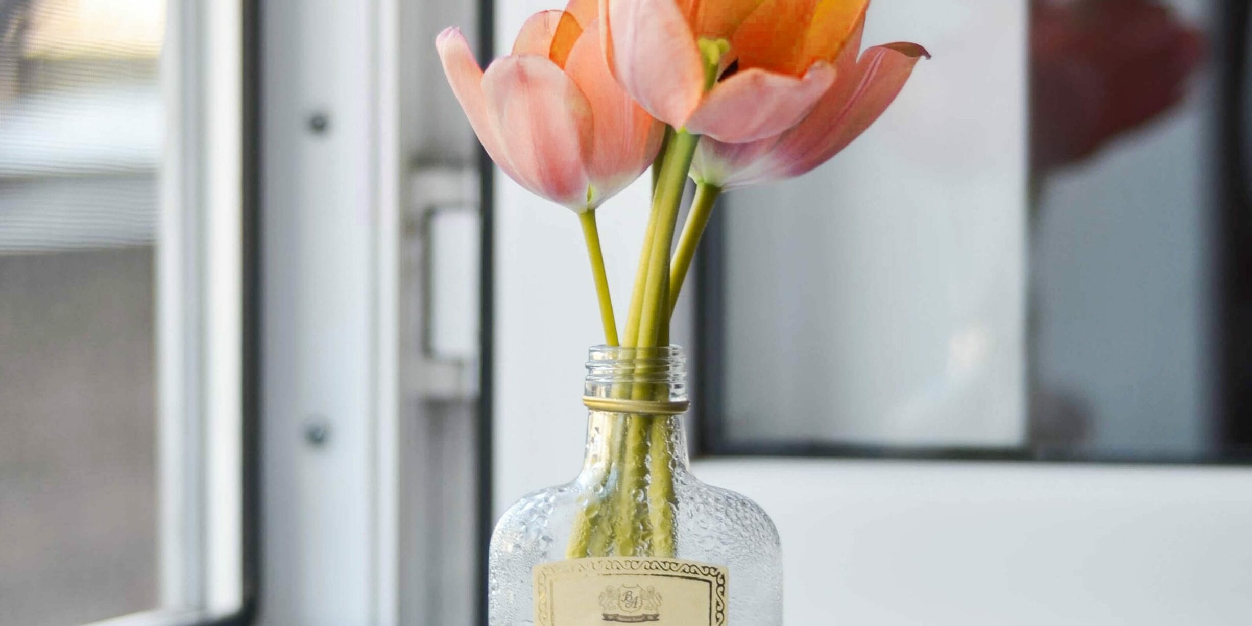 glass alcohol bottle turned into flower vase