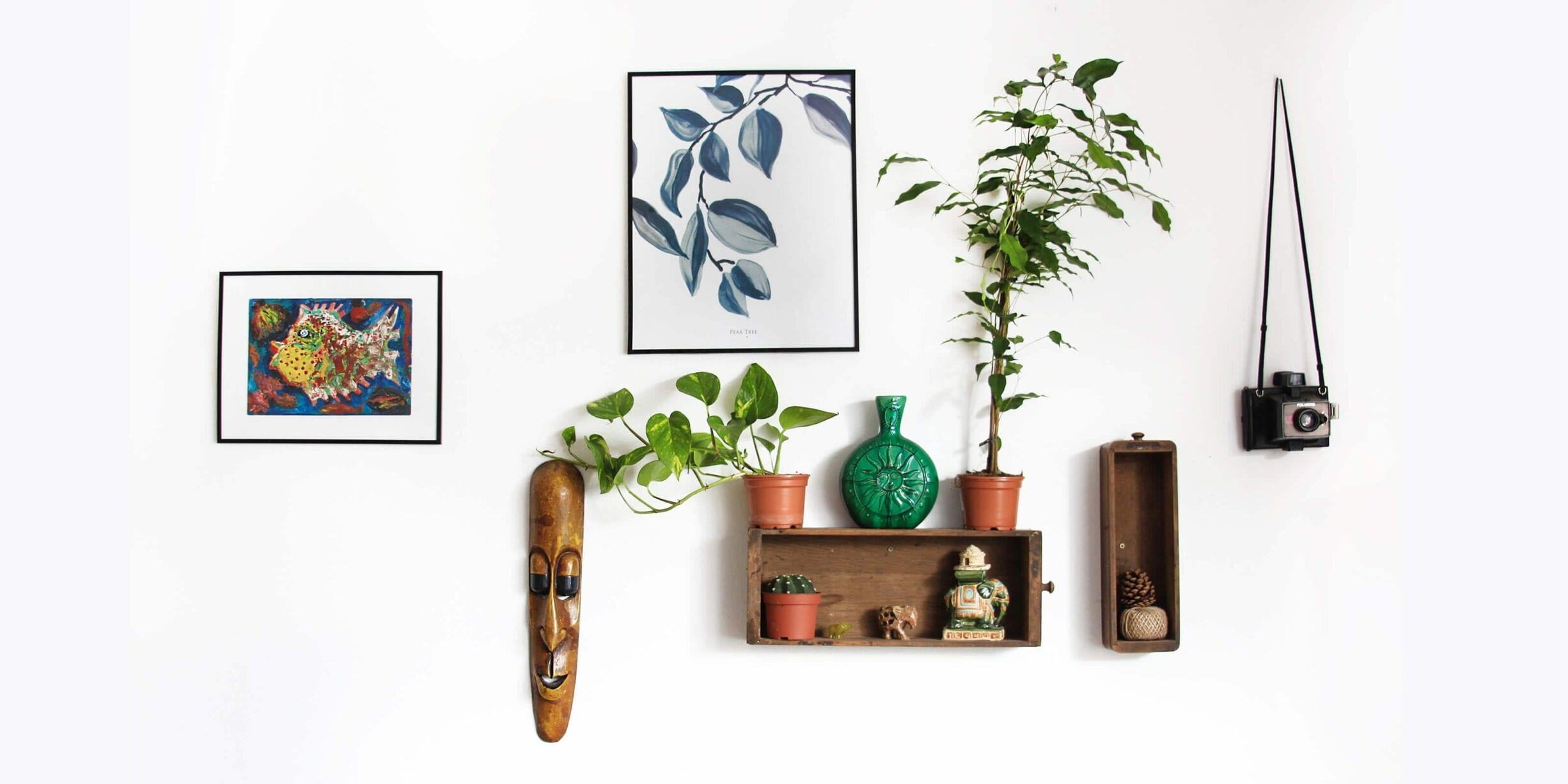 shelves mounted on wall, paintings, house plants