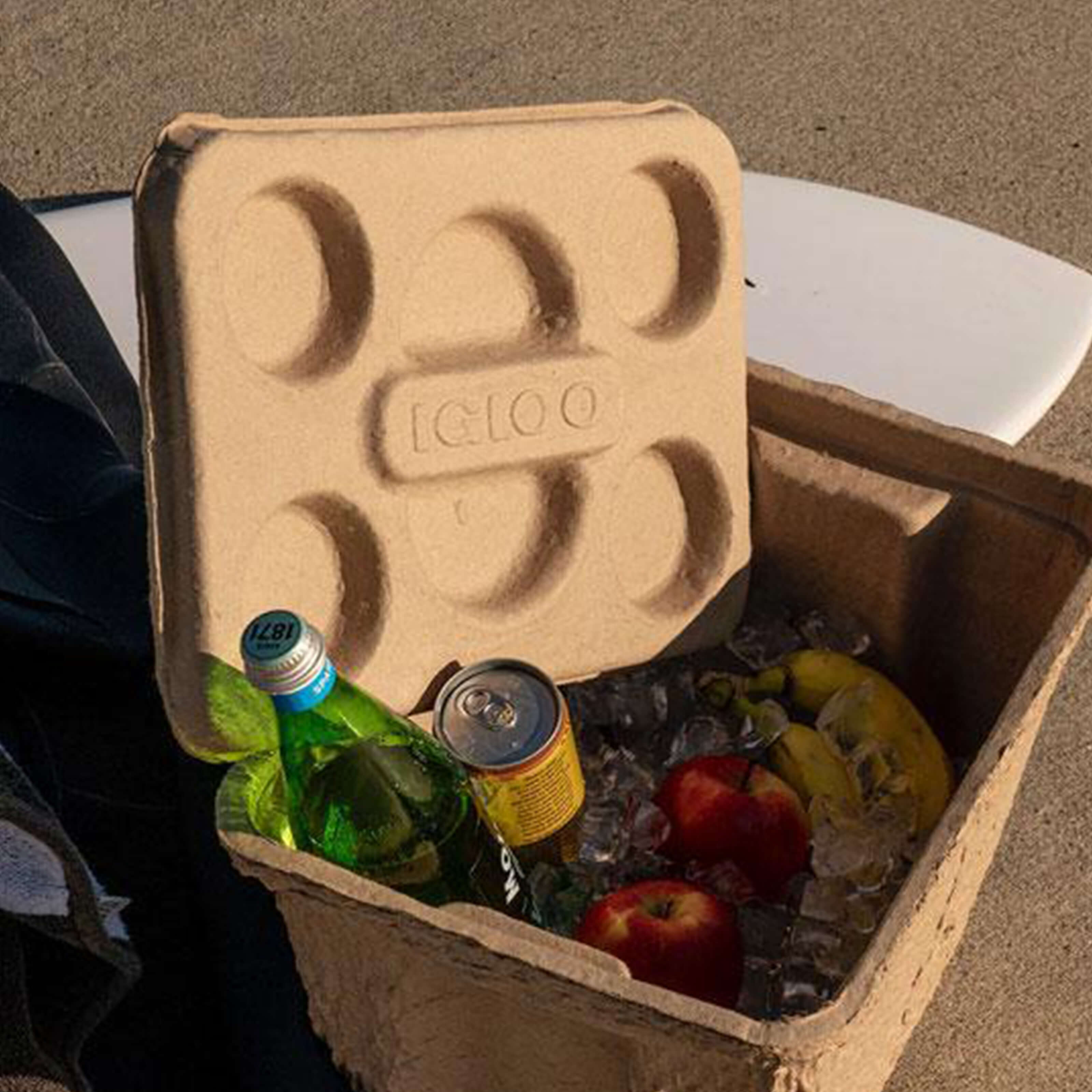 Recool Review: A Look at Igloo's Biodegradable Coolers
