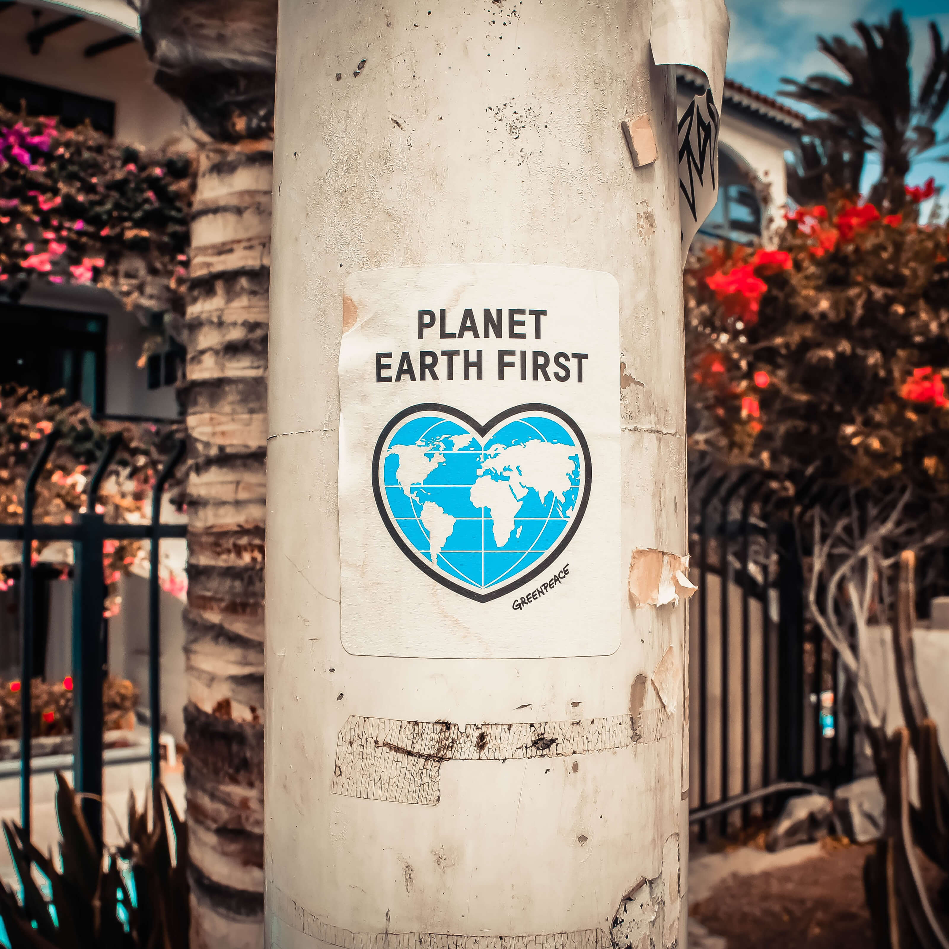 planet earth first greenpeace poster