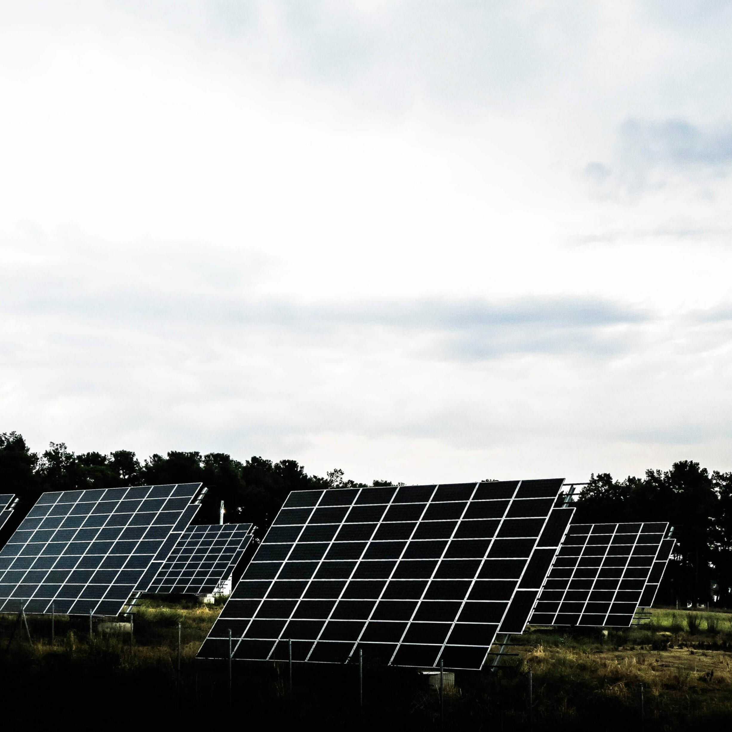 The Major Hurdles Standing in the Way of Green Energy