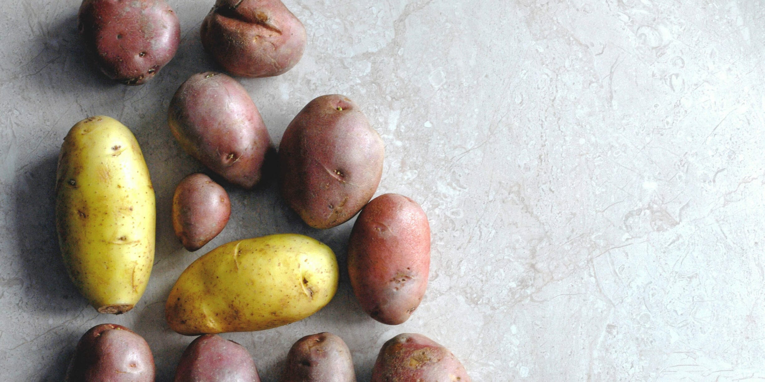 variety of potatoes on grey background