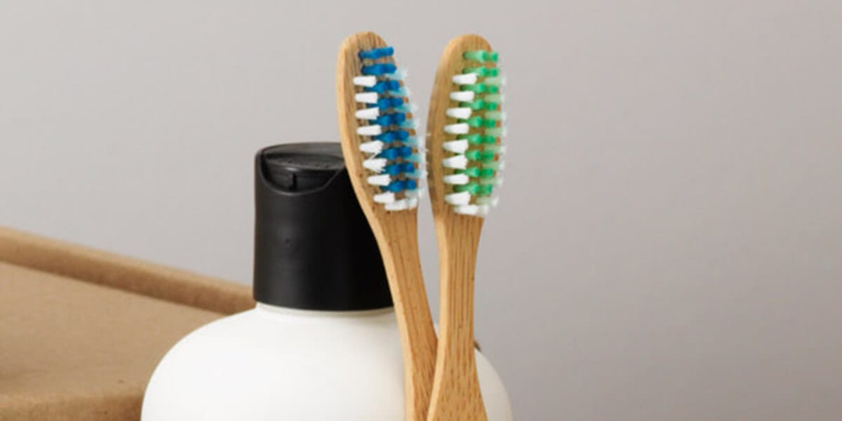 two bamboo toothbrushes stored upright
