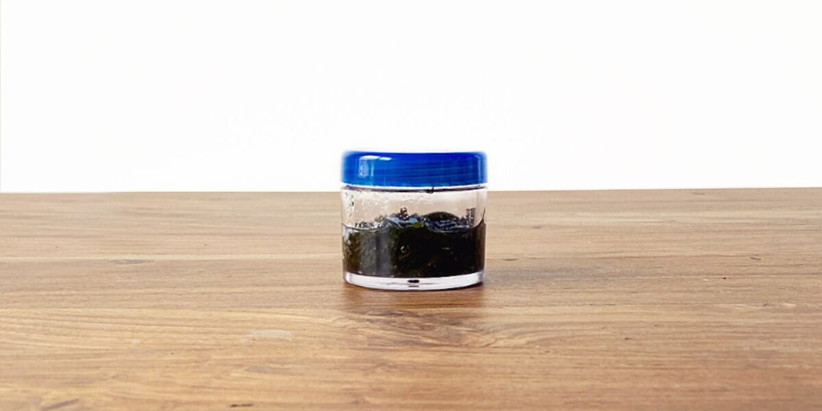 sealed container filled with peppermint oil and carrier oil