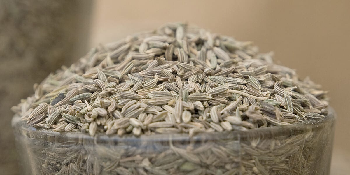 bowl of cumin seeds
