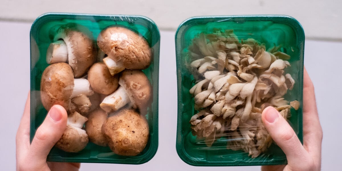 two containers of mushrooms covered with plastic wrap
