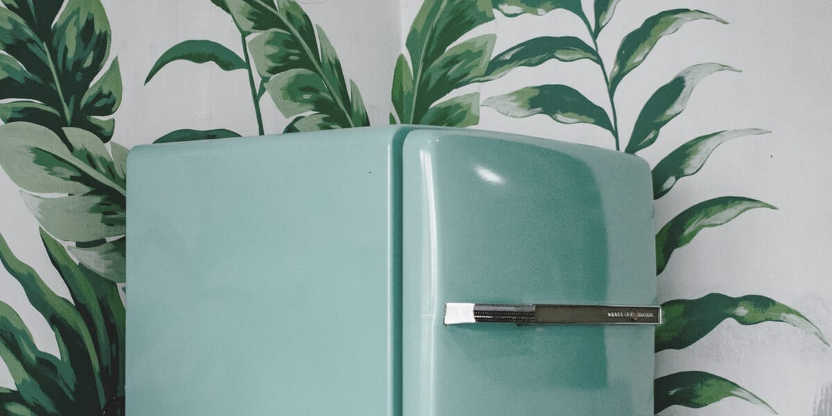 blue refrigerator, green leaves painted on wall