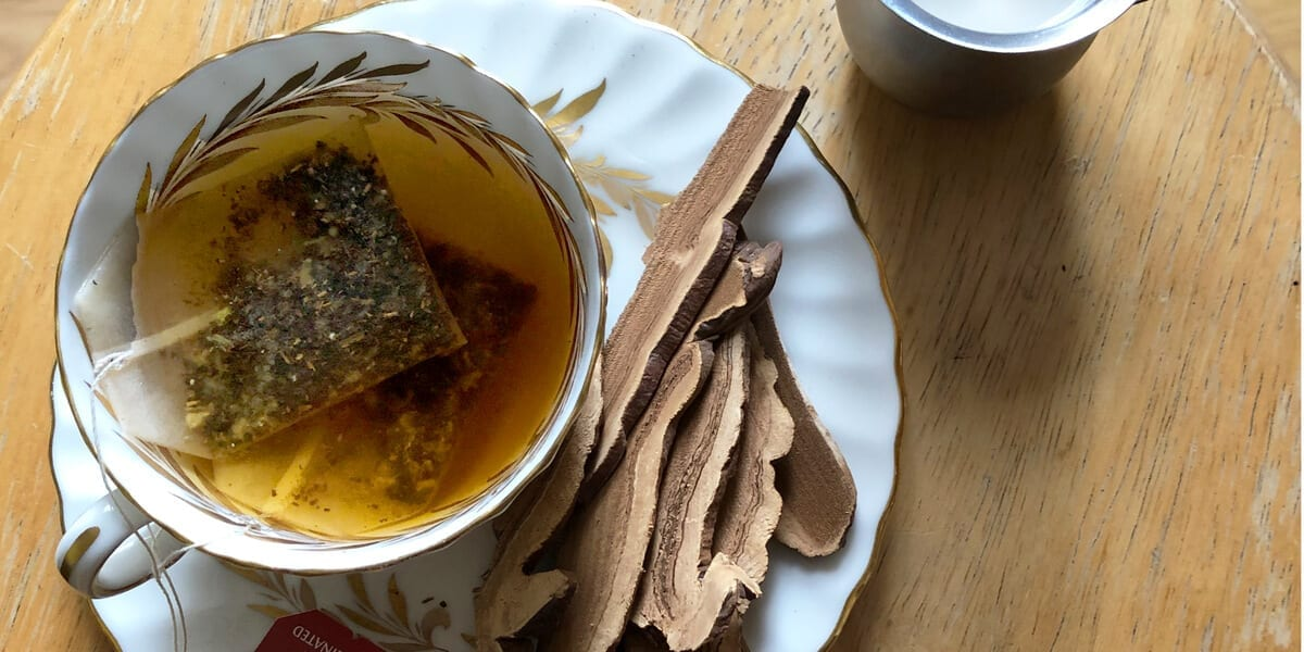 cup of hot chai tea and reishi mushrooms on tea plate