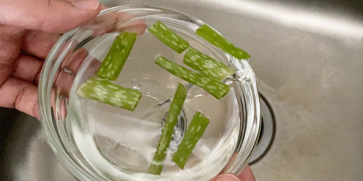 aloe vera leaves in glass bowl of water, pouring water into the kitchen sink, hands holding glass bowl