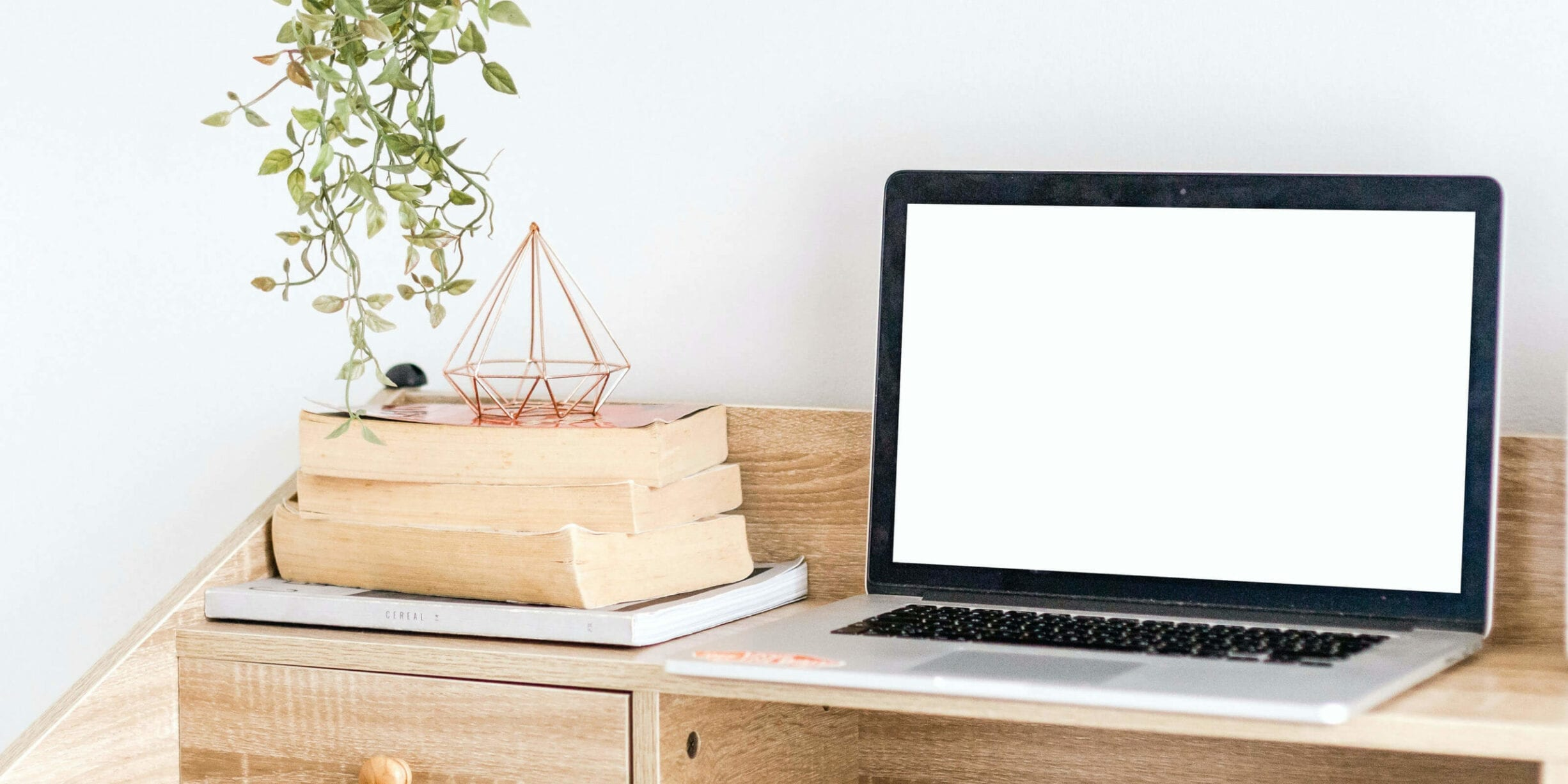 laptop on a desk with a stack of books, plant and sculpture