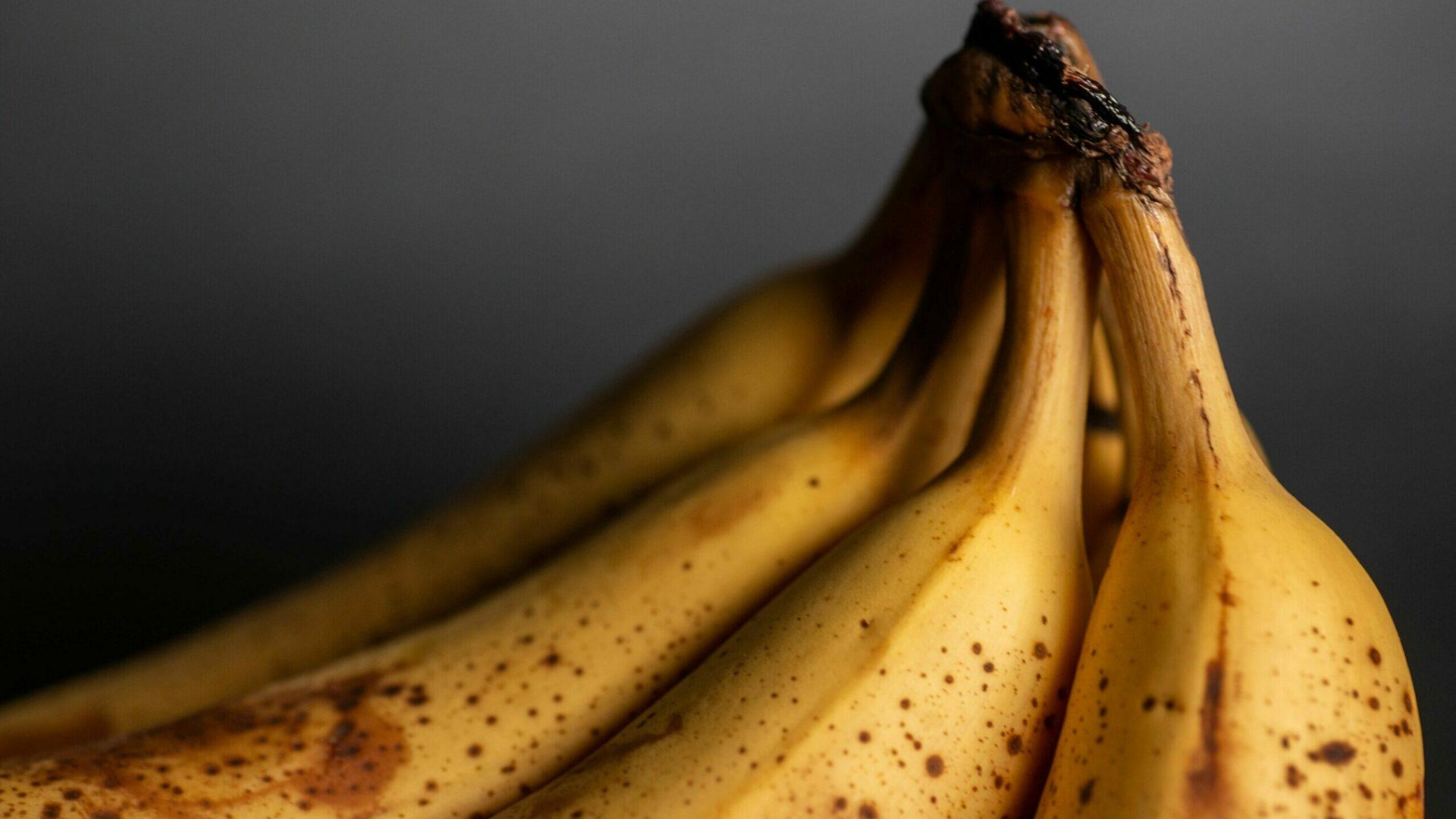 3 Deceptively Healthy, Vegan No-Bake Desserts