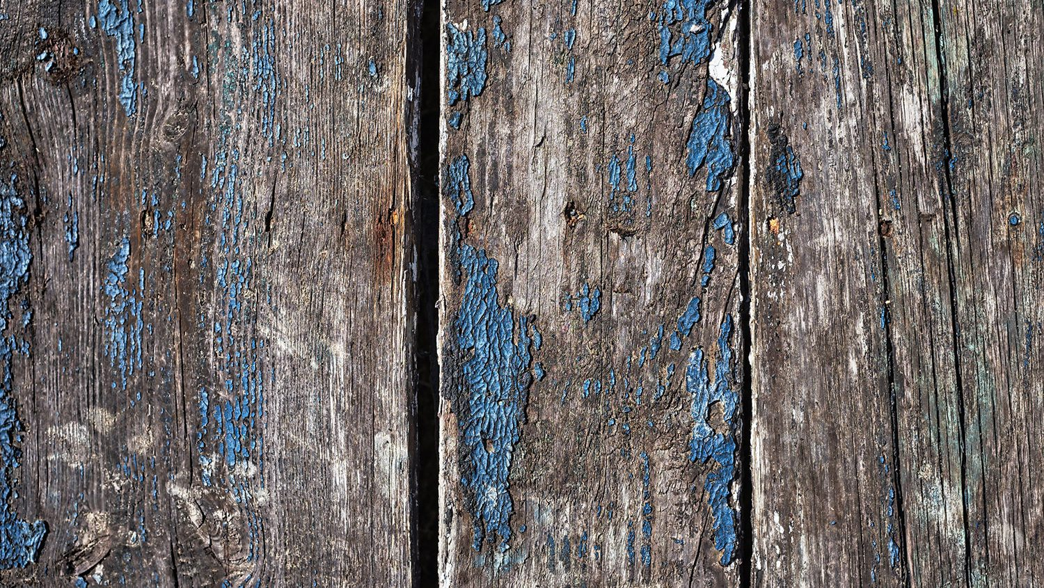 painted wood fence