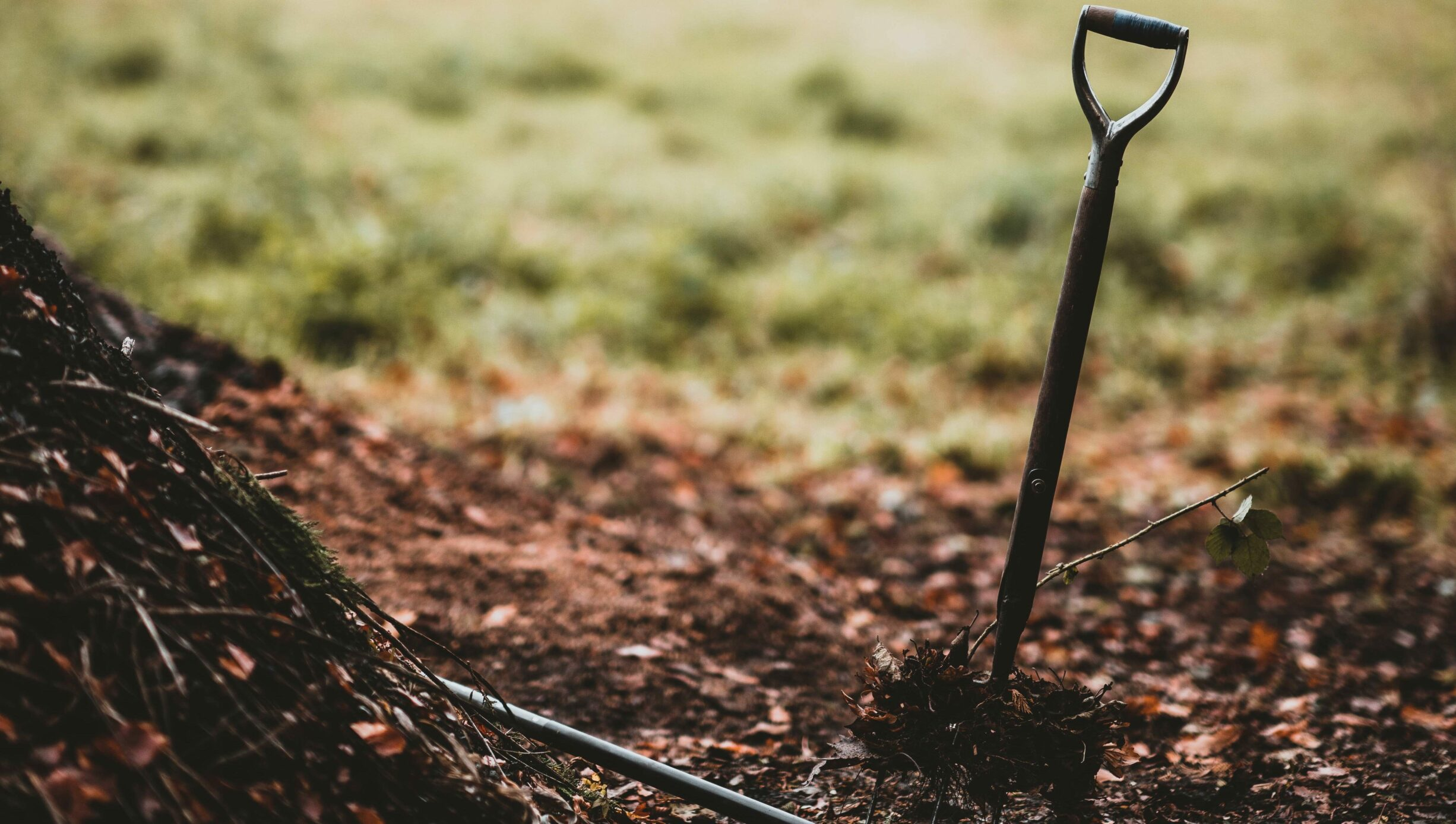 shovel in pile of compost